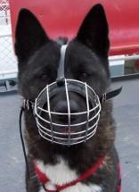 Photo courtesy Morrco.com Pet Supply Company