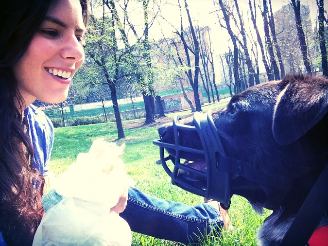 Guest Post: Take the Two Week Muzzle Challenge | The Muzzle Up! Project